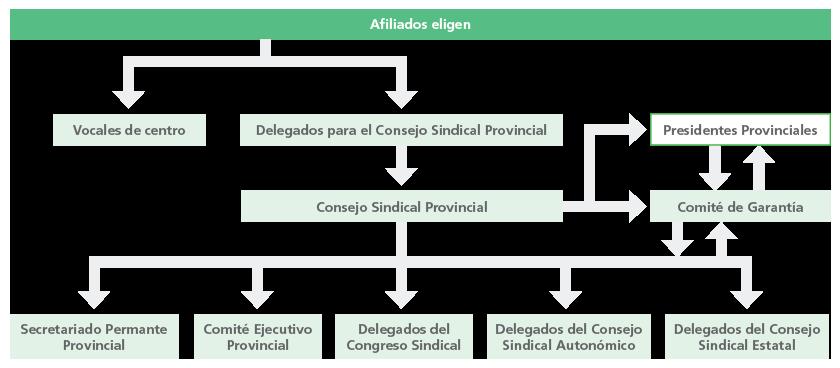 Estructura Provincial
